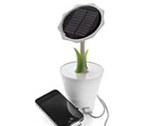 chargeur-solaire-Sunflower.jpg